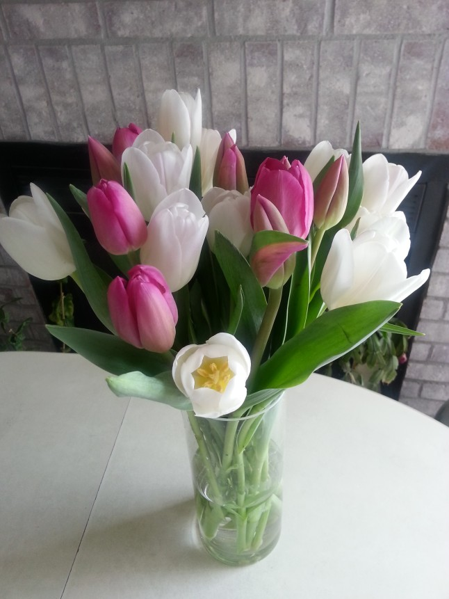 In loving memory of my dad: tulips are a symbol of Spring and eternal life. May his legacy live on through me and he rest in eternal peace in heaven. :)
