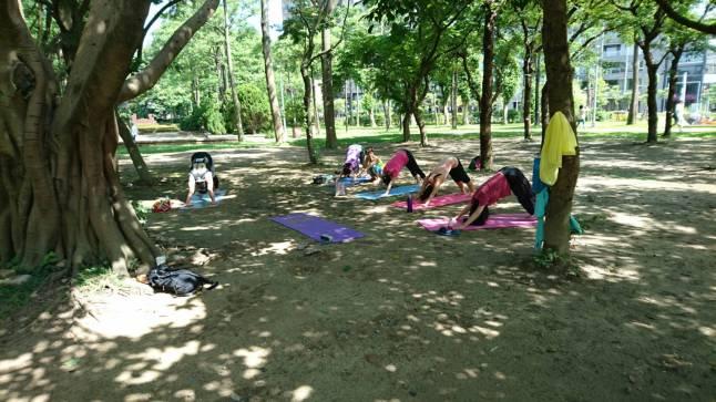 daan-park-yoga